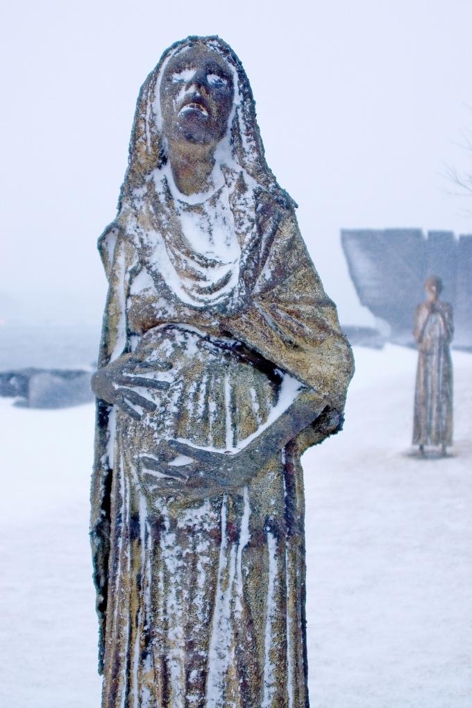 Ireland-Park-(Winter)-#1